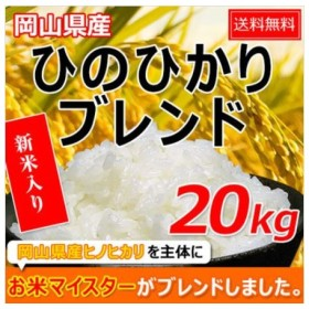 米 お米 20kg ヒノヒカリブレンド (5kg×4袋) 送料無料