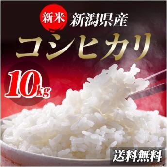 米 お米 10kg 新潟県産コシヒカリ 30年産 (5kg×2袋) 送料無料