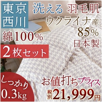 肌掛け布団 シングル 2枚まとめ買い 送料無料 東京西川 羽毛布団 夏 洗える 抗菌 部屋干しOK