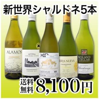 ワインセット 京橋ワイン厳選果実味満載の新世界シャルドネ5本セット wine