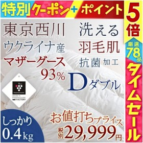 羽毛肌布団 ダブル 東京西川  夏 掛け布団 マザーグース93%