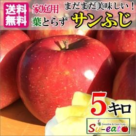 訳あり 長野産 味極み りんご サンふじ 減農薬 送料無料 約5キロ