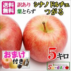 送料無料 訳あり 味極み 長野産 りんご 減農薬 約5キロ