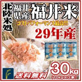 米30kg 白米 福井米  30年産 10kg×3袋  福井県産 米30kg 送料無