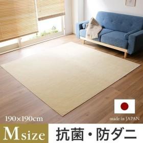 ラグマット ラグ おしゃれ 190×190cm Mサイズ 日本製 抗菌 防ダニ センター 絨毯 じゅうたん 正方形 軽い 爽やか ロウヤ LOWYA