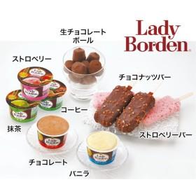 レディーボーデン アイスクリーム 詰め合わせ セット 8種 計19個 レディボーデン ※お届けまで約10日