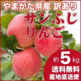 りんご 訳あり 5キロ サンふじ 山形県産 ご家庭用 産地直送 林檎 リンゴ 5kg