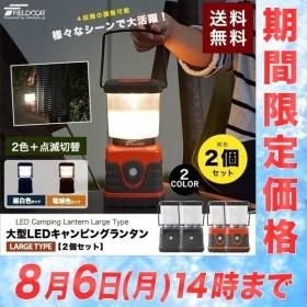 ランタン ライト LEDランタン ランプ LED 電池式 アウトドア キャンプ 防災 登山 釣り 懐中電灯 停電 車中泊 2個セット 送料無料