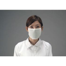 【メーカー在庫あり】 000012019702 エスコ ESCO マスク 防臭/5枚 JP店
