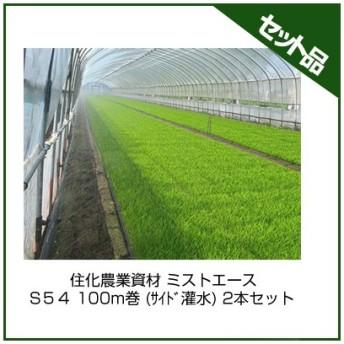 住化農業資材 ミストエース S54 100m巻 (サイド灌水) 2本セット 潅水チューブ 灌水チューブ