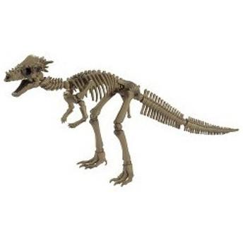 ポーズスケルトン パキケファロサウルス ( 1コ入 )/ ポーズスケルトン