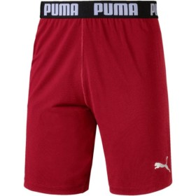PUMA(プーマ) メンズ サッカー・フットサルウェア FTBLNXT EVOKNIT ショーツ 655568 02RED DAHLIA M