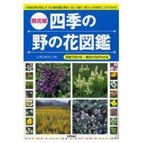 新品本/開花順四季の野の花図鑑 花色で引ける・見分け方がわかる いがりまさし/著
