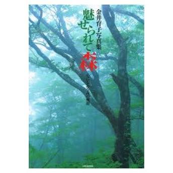 新品本/金井育子写真集 魅せられて森 心にしみる 金井 育子