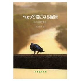 新品本/ちょっと気になる風景 天白川撮り歩き 高須清光/著