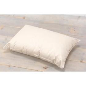 キュートリー ハイパワー消臭枕 (CHR01CT-M) 幅63×奥行43×厚さ15cm (抗菌、消臭、防臭加工)