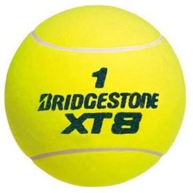 ブリヂストン サインボール専用テニスボール BACV03
