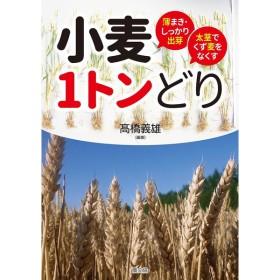 小麦1トンどり 薄まき・しっかり出芽太茎でくず麦をなくす/高橋義雄