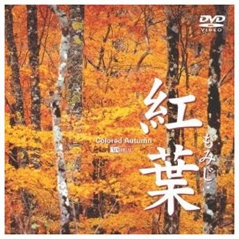シンフォレストDVD 紅葉 -もみじ- 【DVD】