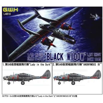 1/48 WWII 米陸軍 P-61B ブラックウィドウ ラストショットダウン1945 プラモデル ピットロード/グレートウォールホビー L4810(C4076)