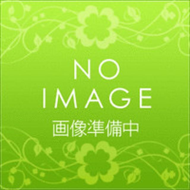 パナソニック【KZ-GDB4】防熱グリルドア ビルトインタイプ用