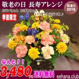 売れてます!敬老の日★人気の長寿アレンジが3,480円【送料無料】ネット特価!