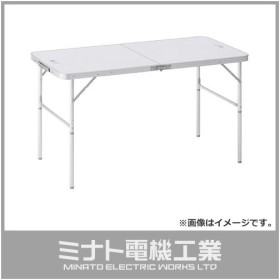 【取扱終了】ロゴス(LOGOS) ROSY 2FD テーブル 幅120×奥行60×高さ68/35cm 73180010 [ファニチャー テーブル]