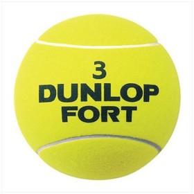 DUNLOP(ダンロップテニス) ジャンボボール