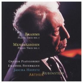 ルービンシュタイン/メンデルスゾーン:ピアノ三重奏曲第1番&ブラームス:ピアノ三重奏曲第1番