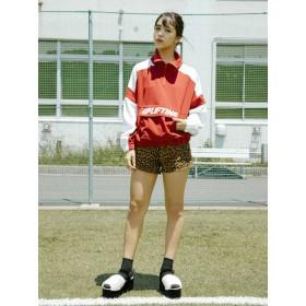 【5,000円以上お買物で送料無料】レオパードショートパンツ
