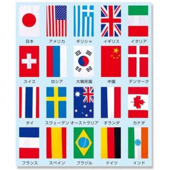 お取り寄せ 万国旗 20カ国連続旗 053002002 1枚
