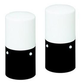 アイリスオーヤマ LEDガーデンセンサーライト 足下灯 スリムタイプ 乾電池式 防雨タイプ 白色 LED1.0W センサー部2ヶ所 電池別売 2個セット LSL-MS2