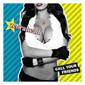 輸入盤 ZEBRAHEAD / CALL YOUR FRIENDS [CD]