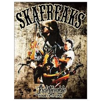 SKA FREAKS/Indefinable TOUR 14-15 FINAL [DVD]