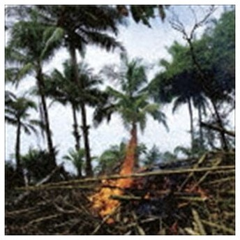 Metaphors(Selected Soundworks from the Cinema of Apichatpong Weerasethakul) [CD]