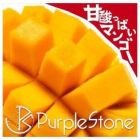 Purple Stone / 甘酸っぱいマンゴー(通常盤) [CD]