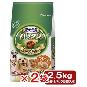 愛犬元気 パックン 全成長段階用 ビーフ・緑黄色野菜・小魚・チーズ入り 2.5kg(500g×5袋)2袋入り