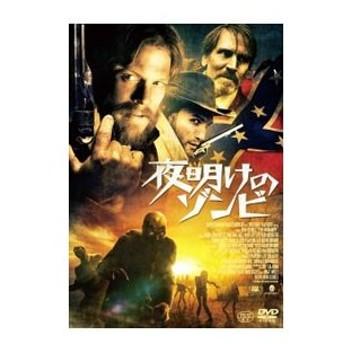 DVD/夜明けのゾンビ