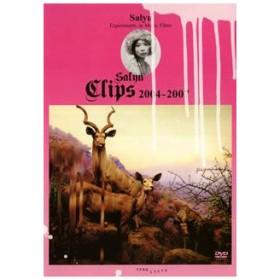 Salyu Clips 2004-2007 Salyu DVD