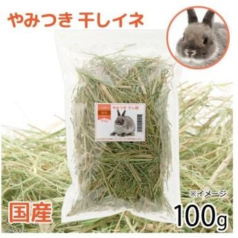 国産 やみつき干し稲 100g おやつ牧草 敷材 関東当日便