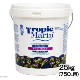 佐川急便指定 トロピックマリン PRO−REEF シーソルト 25kg(750L用) バケツ入り 人工海水 沖縄不可