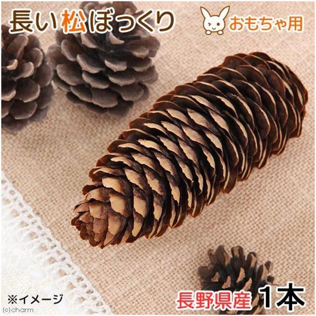 長野県産 長い松ぼっくり 1個 小動物のおもちゃ パインコーン 国産 無添加 無着色
