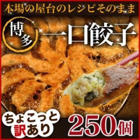 餃子 送料無料 冷凍 ひと口サイズ プレゼント 博多流 屋台の味 屋台の味・博多一口餃子25個×10パック+タレ付