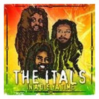 輸入盤 ITALS / IN A DIS YA TIME [CD]