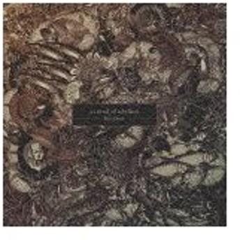 The Crow/a crowd of rebellion[CD]通常盤【返品種別A】