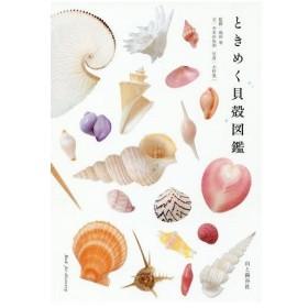 ときめく貝殻図鑑/寺本沙也加/文 池田等/監修 大作晃一/写真