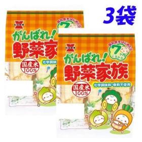 岩塚 がんばれ!野菜家族 51g×3袋