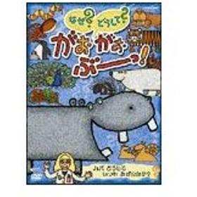 NHK なぜどうしてがおがおぶーっ! カバ どうして いつも みずのなか/子供向け[DVD]【返品種別A】