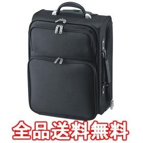 サンワサプライ コンパクトキャリーバッグ BAG-CR1TN