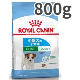 【お取寄せ品】ロイヤルカナン ミニパピー 小型犬子犬用 800g【送料無料】